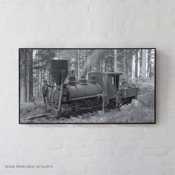 20th Century Locomotive Steam Engine, amongst the woods